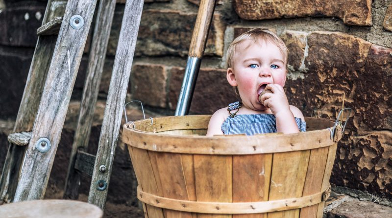 Pentingnya Penanaman Gizi untuk Kognitif Anak